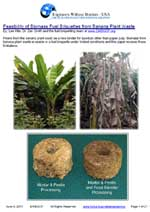 Feasibility of Biomass Fuel Briquettes from Banana Plant Waste  by: Lee Hite & Dr. Zan Smith